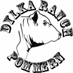 Dylka Ranch - Logo