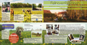 Fellnasenranch - Flyer